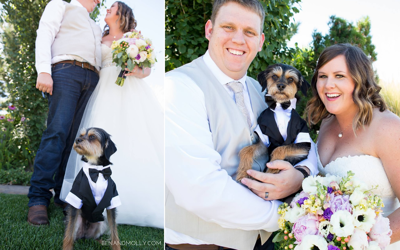 Pet – Puyallup & Chelan Event Planning & Wedding Flowers – 5