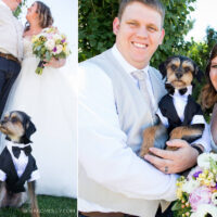 Pet – Puyallup & Chelan Event Planning & Wedding Flowers – 5