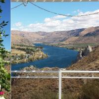 Trellises, Arbors & Altar Arrangements – 30
